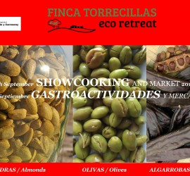 showcooking : almond+olive+carob  September 5th 2015