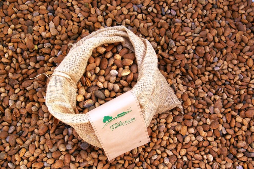 Organic Almond bulk