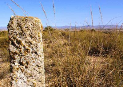 Finca Torrecillas eco retreat Historia y Cultura Corvera