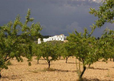Finca Torrecillas eco retreat Corvera Murcia Casa Museo