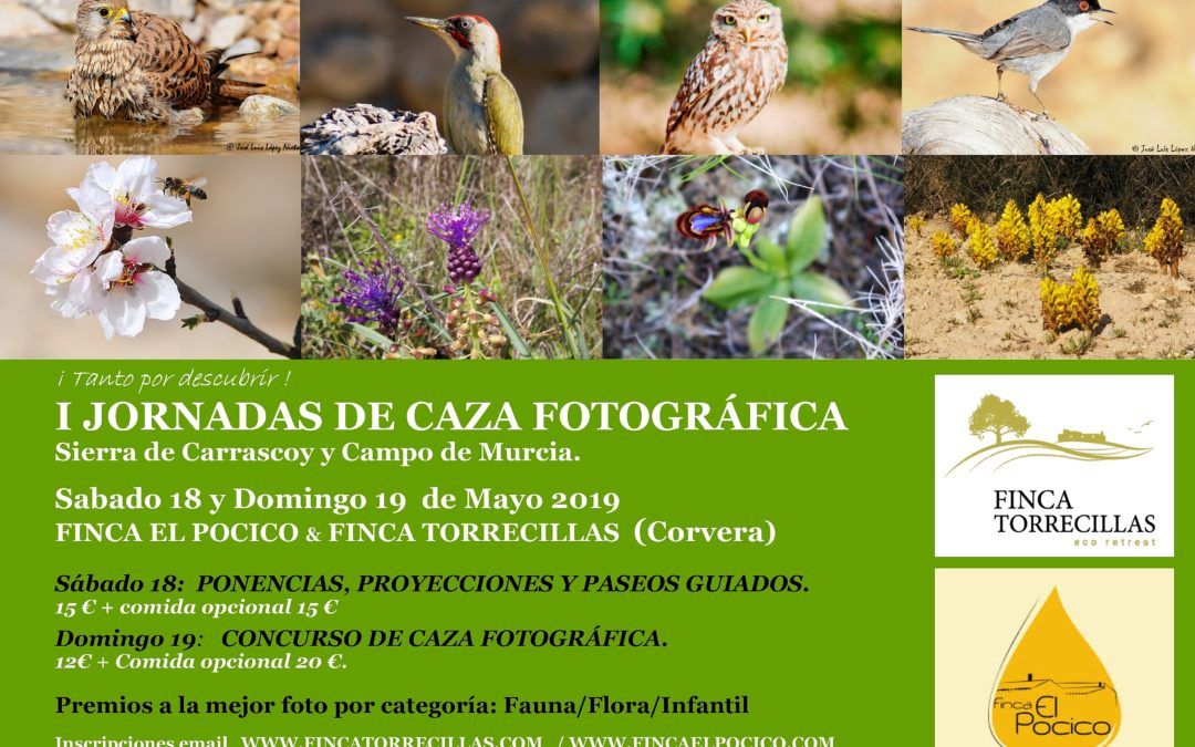 2019 MAYO 18 y 18                     I JORNADAS DE CAZA FOTOGRÁFICA