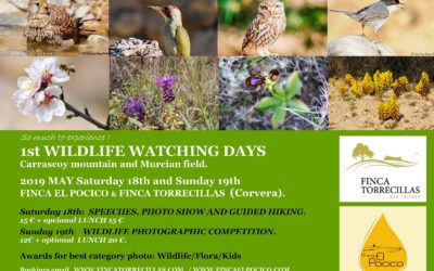 MAY 18th & 19th 2019                   1st WILDLIFE WATCHING DAYS